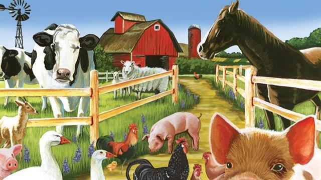 Kids N Fun De 27 Ausmalbilder Von Auf Dem Bauernhof
