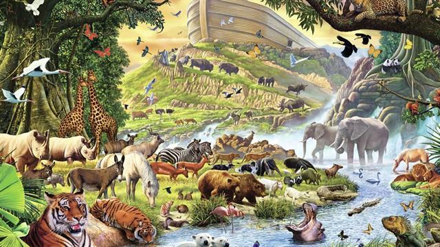 Kids N Fun De 8 Ausmalbilder Von Bibel Die Arche Noah
