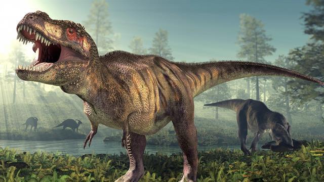 Kids N Funde 23 Ausmalbilder Von Dinosaurier 2