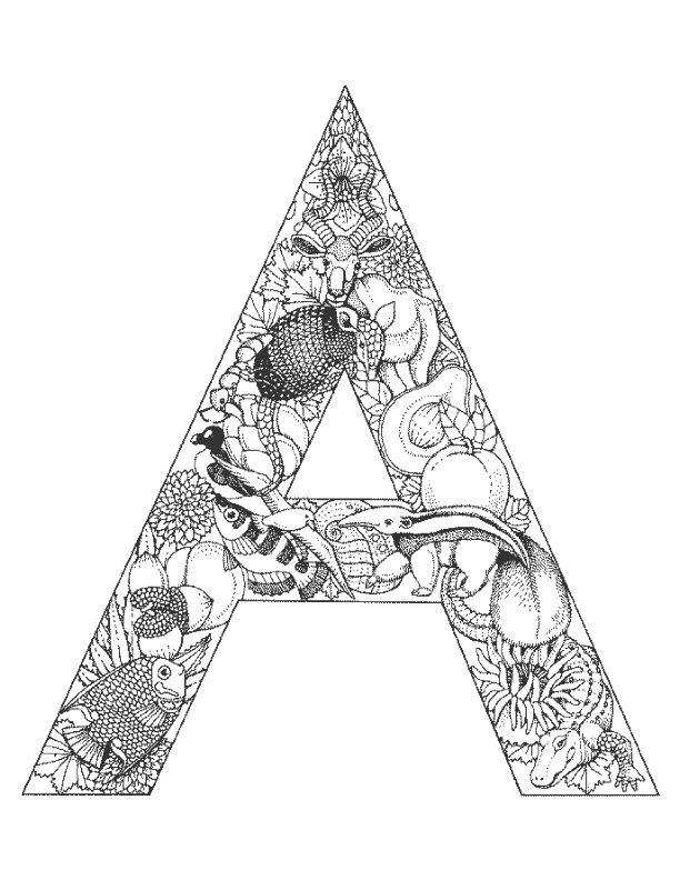 kidsnfunde  malvorlage alphabet tiere alphabet tiere