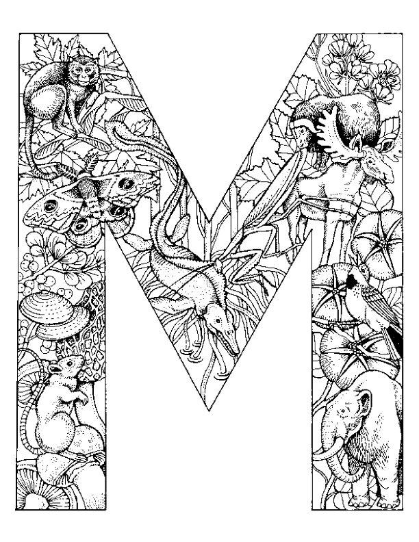 kidsnfunde  26 ausmalbilder von alphabet tiere