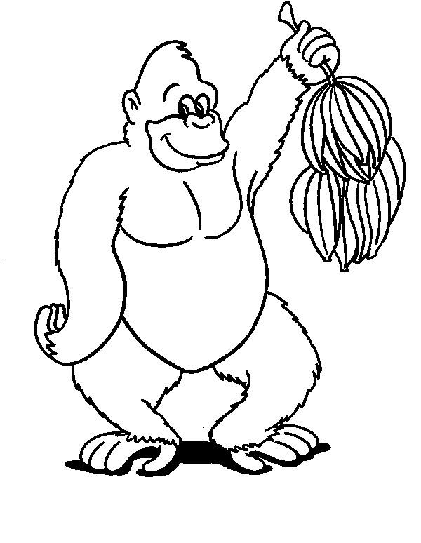 Kids-n-fun.de   34 Ausmalbilder von Affen
