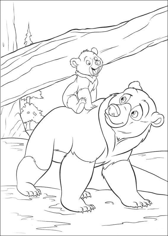 Kids N Fun De Ausmalbild Bärenbrüder 2 Bärenbrüder 2