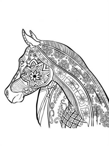 Free Printable Coloring Pages For Adults 13
