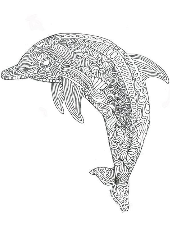 kidsnfunde  malvorlage delfine schwer delphin schwer 01