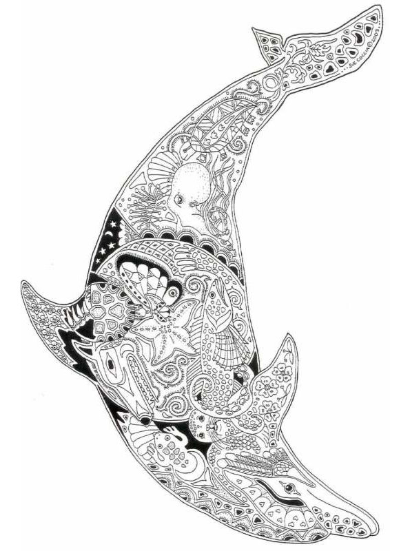kidsnfunde  malvorlage delfine schwer delphin schwer 03