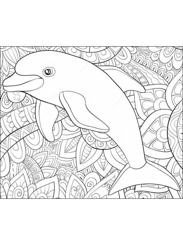 kidsnfunde  malvorlage delfine schwer delphin schwer 10