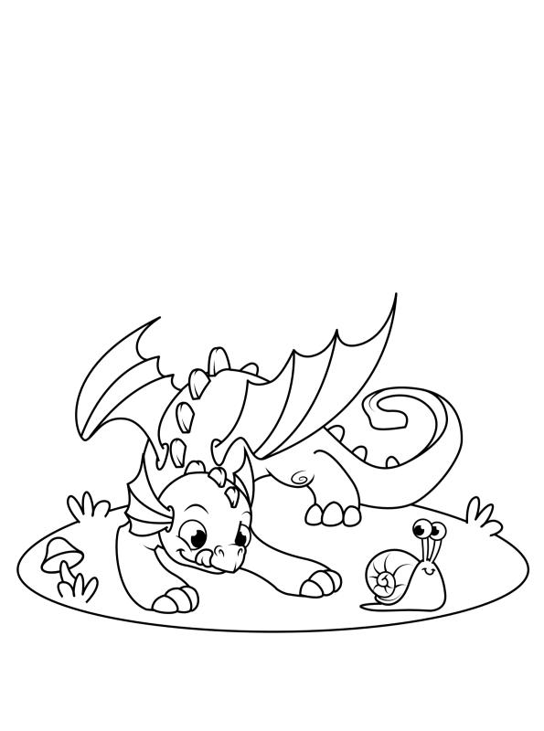 kidsnfunde  malvorlage drachen drache und schnecke