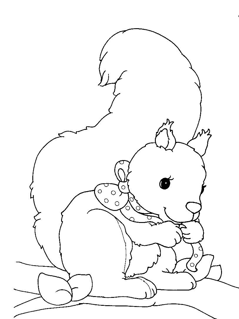 Kids-n-fun.de | 13 Ausmalbilder von Eichhörnchen