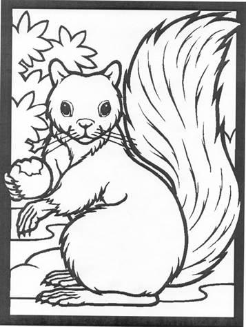 kids-n-fun.de   13 ausmalbilder von eichhörnchen