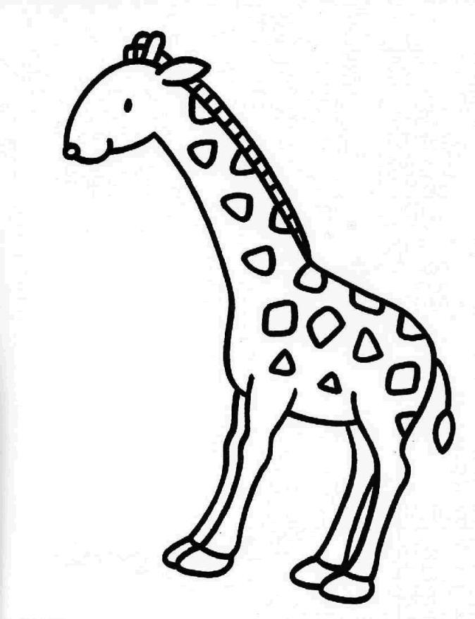 kidsnfunde  malvorlage giraffe giraffe