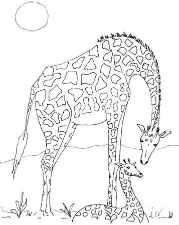 Kids N Funde 45 Ausmalbilder Von Giraffe