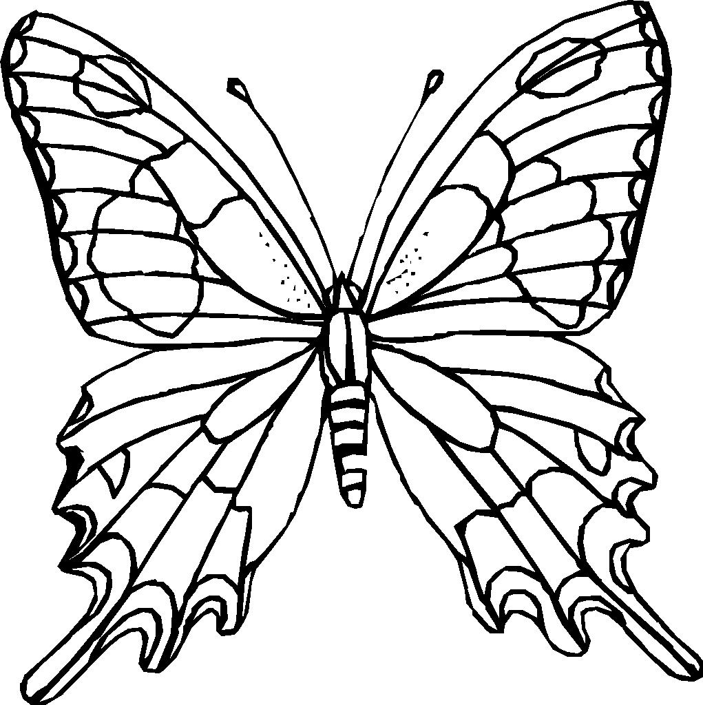 kidsnfunde  16 ausmalbilder von insekten