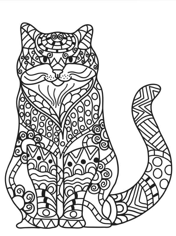 kidsnfunde  katzen erwachsene 03