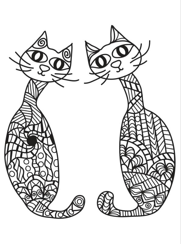 kidsnfunde  katzen erwachsene 17