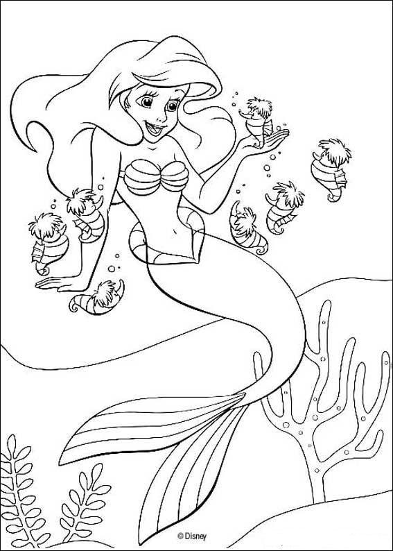 Kids N Fun De Ausmalbild Arielle Die Meerjungfrau Arielle Die