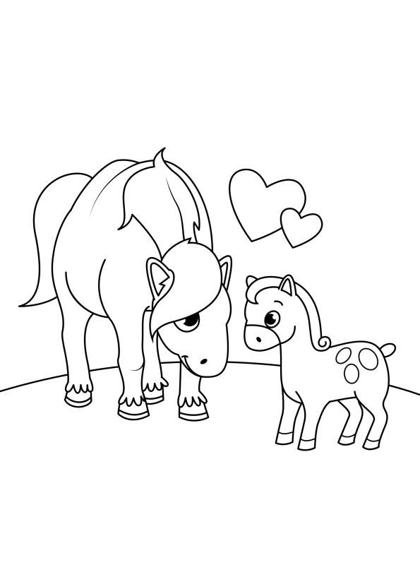 kidsnfunde  malvorlage pferde kinder fohlen