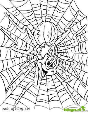 Kids N Fun De 10 Ausmalbilder Von Spinnen