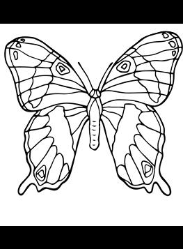 Kids N Fun De 56 Ausmalbilder Von Schmetterlinge