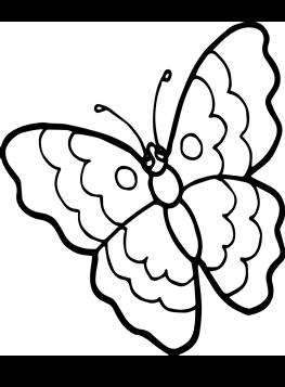 Schmetterling zum ausmalen Schmetterling Ausmalbilder