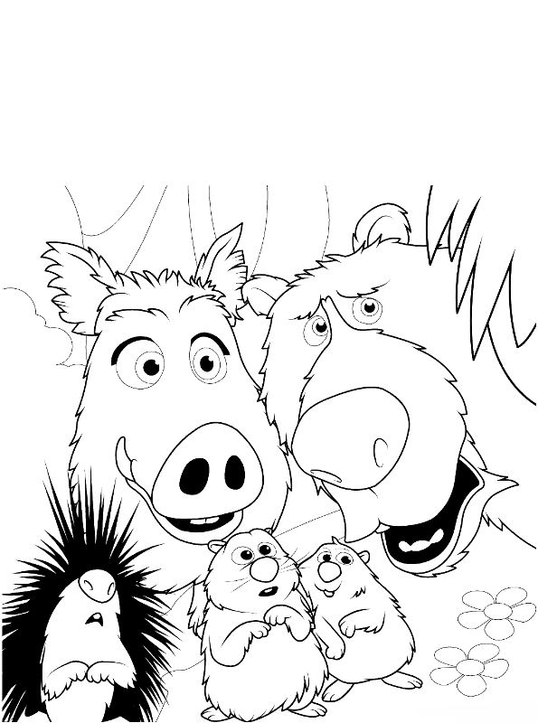 Everglades National Park Coloring Page | Cat coloring book ... | 800x595