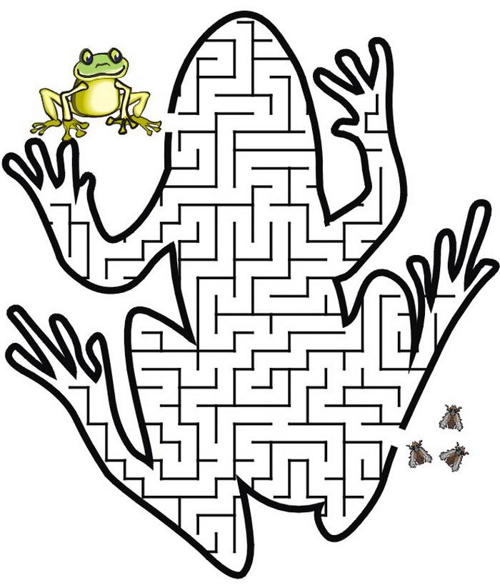 kidsnfunde  puzzles labyrinth labyrinth frosch